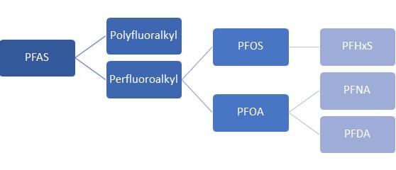 Per-and Polyfluoroalkyl Substances (PFAS) – An Emerging Challenge